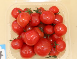 ミニトマト(ぷちぷよトマト)