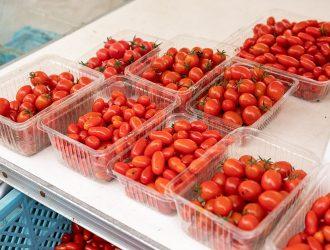 各種ミニトマト
