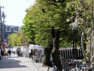 春 ~新緑と朝市~